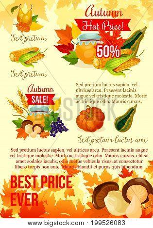 Autumn harvest season sale poster template. Orange fall leaf, pumpkin and corn vegetable, harvest fruit, wheat ear and mushroom, discount price promotion banner or flyer for retail design