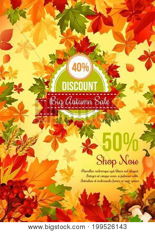 Autumn sale discount offer banner template. Fall leaf, autumn harvest pumpkin vegetable, orange, yellow and green maple foliage retail promotion poster design, decorated with mushroom, acorn and berry