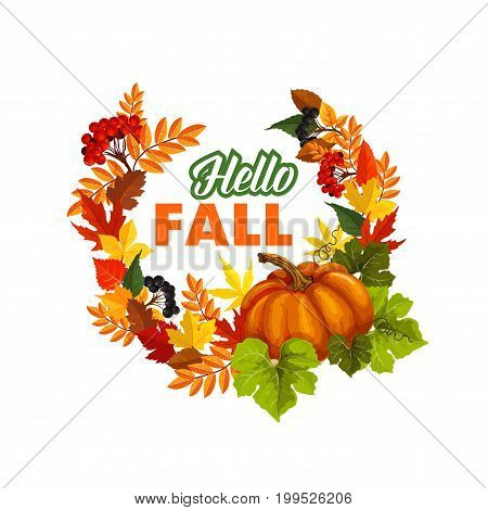 Autumn seasonal greeting card of Hello Fall quote and pumpkin or rowan berry harvest on foliage wreath. Vector poplar, aspen or birch and chestnut autumn leaf, oak acorn for fall holiday design