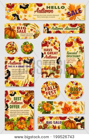 Autumn sale tag, discount offer label and promotion card set. Fall leaf, autumn harvest pumpkin vegetable, cep mushroom, acorn and forest berry with yellow and orange foliage for retail themes design