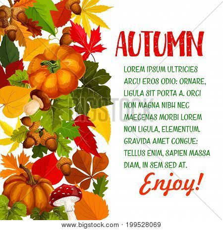 Autumn season poster with pumpkin and fall leaf. Autumn nature yellow leaves of maple tree, harvest pumpkin vegetable, foliage of chestnut, forest mushroom, acorn branch border for banner design
