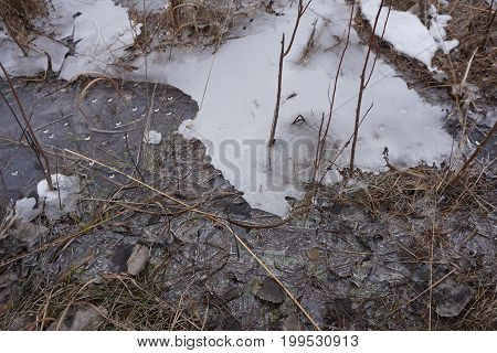 Surface water freezes, to form ice, in the Rock Run Preserve of Joliet, Illinois, during January.