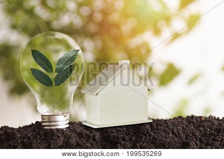 tree planting and growth up and wood house on soil concept as reduce air pollution save World environment day reforesting eco bio arbor CSR ESG ecosystems reforestation concept and Not deforestation