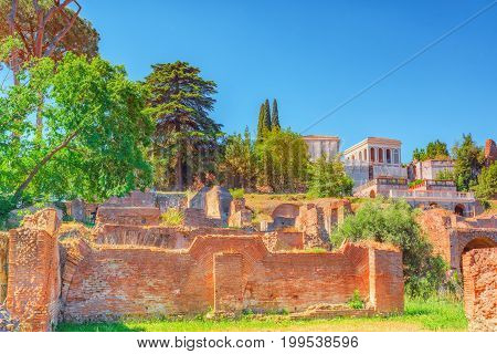 Archaeological And Historical Objects In Rome, United By The Name - Roman Forum. Roman Forum And Pal