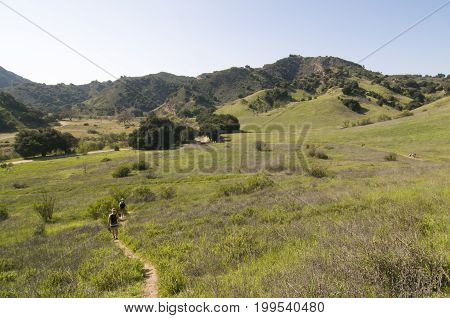 Grasslands Trail overlooking park Malibu Creek State Park, CA