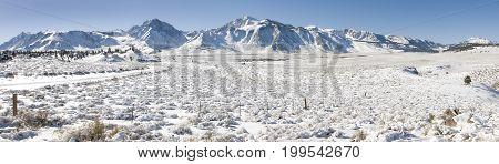 Winter panorama landscape near Mammoth Lakes, CA