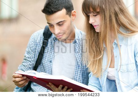 Couple of students reading a book