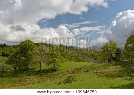 Fields in Little Langdale, English Lake District