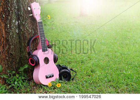 pink headphones ukulele music and black camera on green grass background.