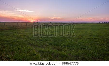 Landscape beautiful sunny sunset in a field.