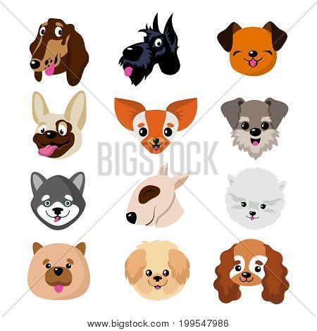 Funny cartoon dog faces. Cute puppy animal vector set. Collection of dog and puppy funny pets illustration