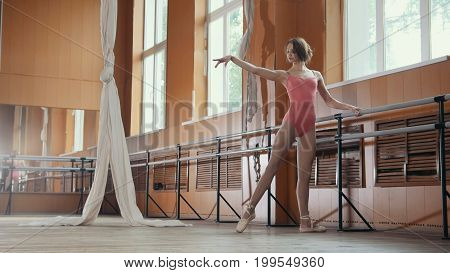 Graceful girl in pink dress and pointe shoes ballerina practicing in the Studio, horizontal