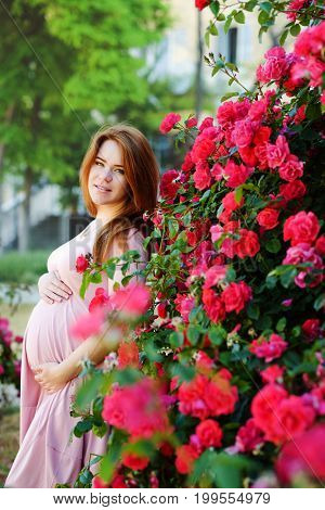 Redhead Pregnant Womann Near The Roses