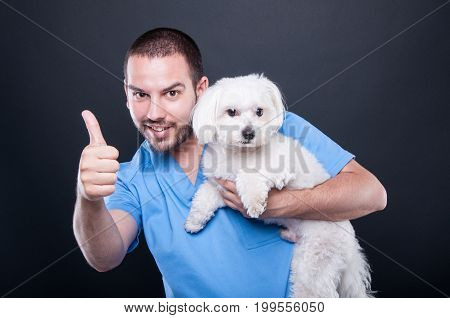 Veterinary Wearing Scrubs Holding Dog Showing Like