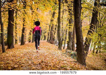 Rear shot of a jogger woman in an autumn park