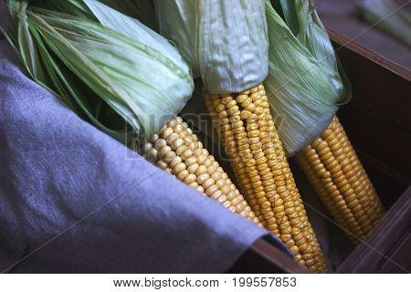 Fresh corn cobs in a wooden box