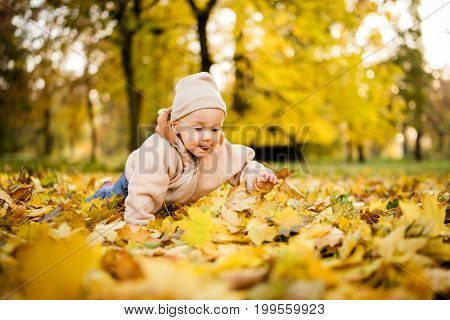 Adorable little baby crawling on autumn leaves