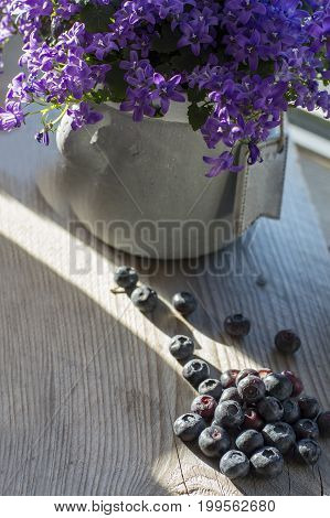 Blueberries are on the wooden background with bellflowers