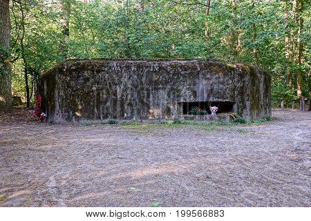 The old embrasure of a concrete military pillbox in the forest