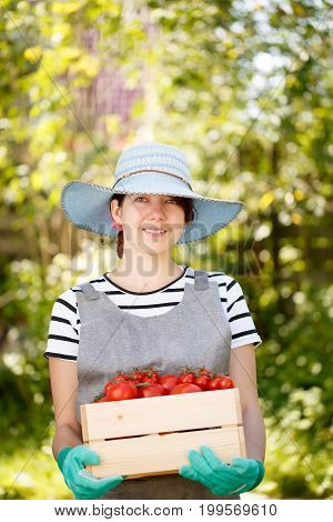 Photo of girl in hat with box of tomato in garden