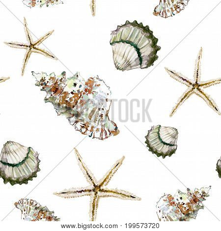 Seamless Marine Pattern With Brown Shells And Starfish On White Background. Watercolor Painting.