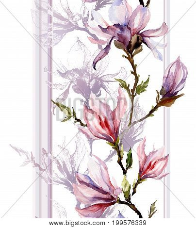 Pink Magnolia Flowers On A Twig With Shadow And Vertical Lines On White Background.