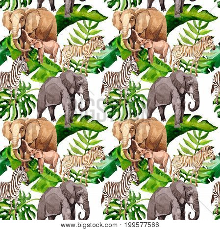 Exotic zebra and elephant wild animals pattern in a watercolor styl. Full name of the animal: zebra. Aquarelle wild animal for background, texture, wrapper pattern or tattoo.