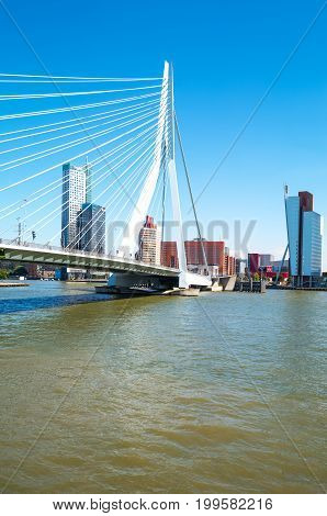 Rotterdam The Nederlands - July 18 2016: The Erasmus bridge on the Maas river with the De Rotterdam towers in the background