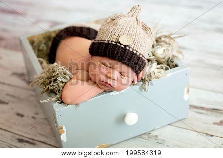 Newborn Baby Boy, Sleeping Happily
