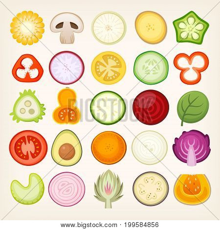 Vegetable slices illustrations. Vector vegetables cut in halves. Circle shaped healthy food cuts.