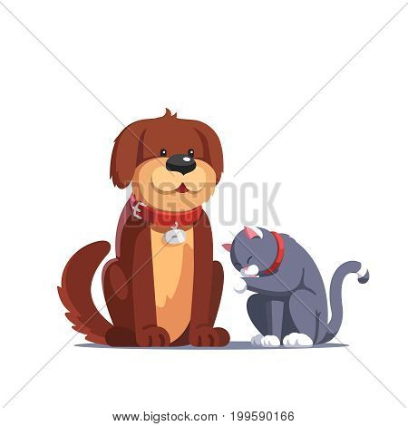 Brown fluffy dog pet with red collar sitting near the grey cat washing itself licking its paw. Domestic animals together. Flat style vector illustration isolated on white background.