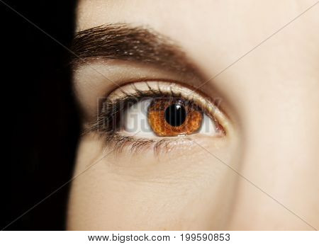 A Beautiful Insightful Look Woman's Eye. Close Up Shot