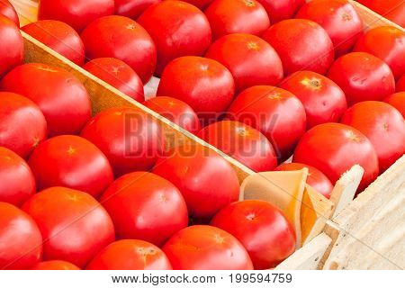 Red Juicy Tomatoes Lie On A Counter Of Shop