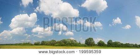 summer meadow in Sunny day with white clouds