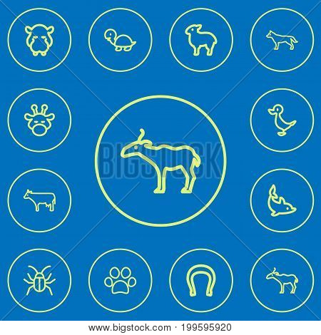 Set Of 12 Editable Zoology Outline Icons. Includes Symbols Such As Antelope, Canine, Dolphin And More