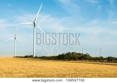 Wind turbines farm. Windmills for electric power production
