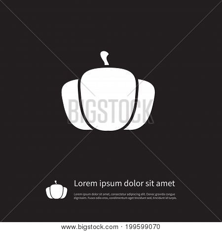 Squash Vector Element Can Be Used For Harvest, Pumpkin, Squash Design Concept.  Isolated Harvest Icon.