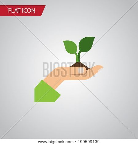 Care Vector Element Can Be Used For Plant, Care, Hand Design Concept.  Isolated Plant Flat Icon.