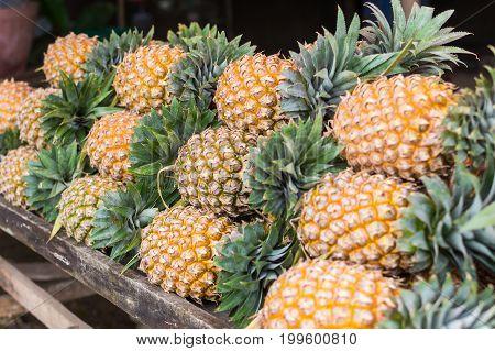 Many Row Of Pineapple At Market Stall