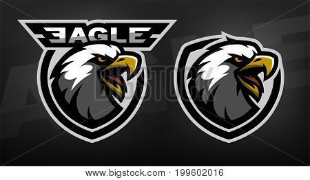 Head of the eagle, sport logo. Two versions on a dark background.