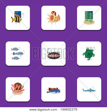 Flat Icon Nature Set Of Seashell, Tuna, Seafood And Other Vector Objects