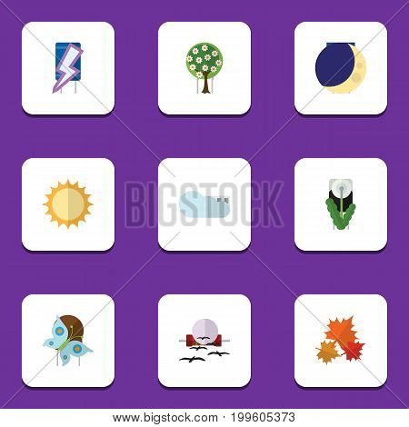 Flat Icon Bio Set Of Overcast, Half Moon, Floral And Other Vector Objects