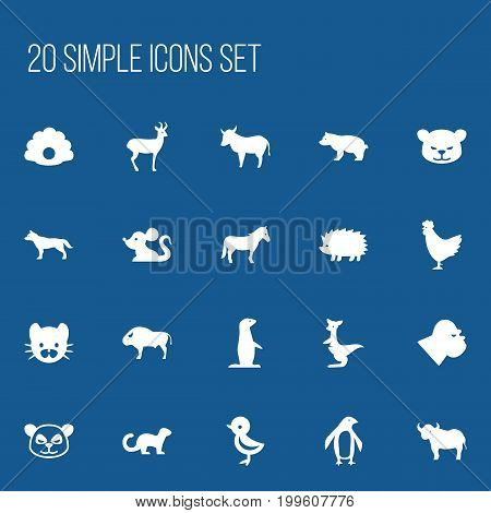 Set Of 20 Editable Animal Icons. Includes Symbols Such As Cow, Polar Animal, Polecat And More