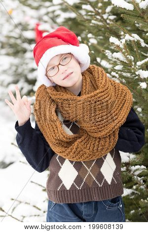 small christmas boy or cute nerd kid in glasses sweater fashionable knitted scarf and red santa claus hat holds ok gesture in winter outdoor at green fir tree with snow on natural background