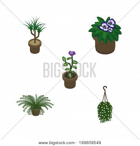 Isometric Houseplant Set Of Blossom, Flower, Plant And Other Vector Objects