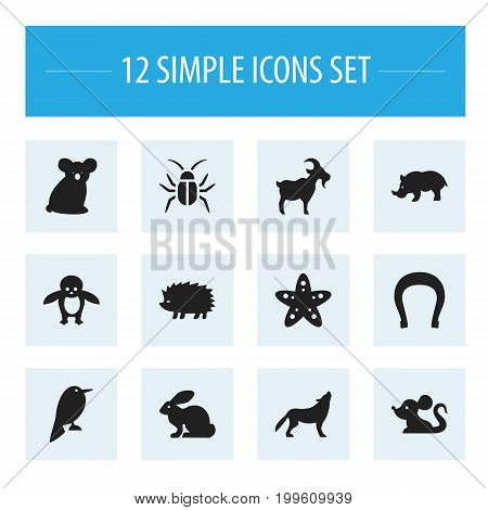 Set Of 12 Editable Zoology Icons. Includes Symbols Such As Rat, Bunny, Australian Bear And More