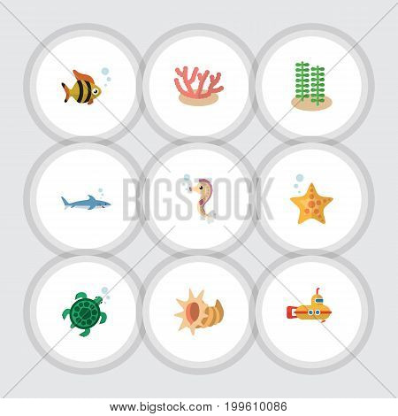 Flat Icon Marine Set Of Seashell, Periscope, Seafood And Other Vector Objects