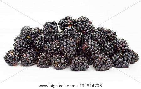 Garden blackberries  fresh, nature, ripe, berry, summer, natura l
