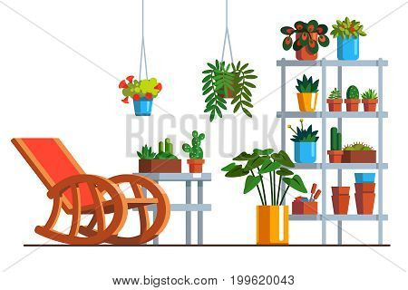 Patio interior design with rocking chair, metal rack, room plants in pots and hanging baskets. Home garden orangery decoration, furniture. Flat style vector illustration isolated on white background.