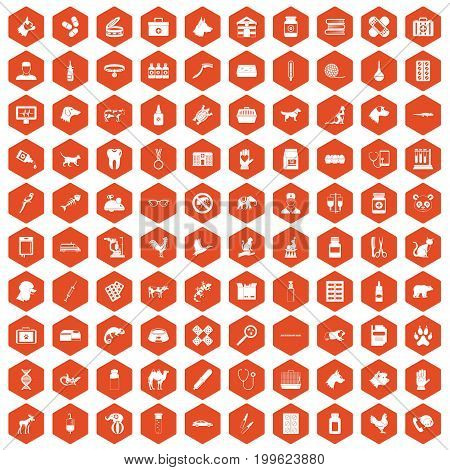 100 veterinary icons set in orange hexagon isolated vector illustration